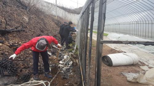 인제군농업기술센터,남전리 산불피해 농가 일손돕기 나서